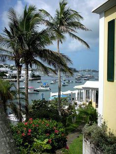 Bermuda Vacations: Stay 3+ nights in Bermuda and enjoy a free night! - View Deals!