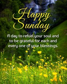 Happy Sunday, Blessings, Grateful, Blessed, Quotes, Quotations, Quote, Shut Up Quotes