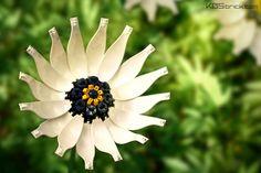 White African Daisy Flower Kos, Lego Food, Lego Lego, Lego Wall Art, Lego Flower, Cool Lego Creations, Lego Design, Lego Parts, Nature Plants