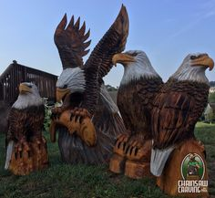 Chainsaw Carving by Paul is a professional chainsaw carver in the York PA area. Eagle Art, Tree Carving, York Pa, Old Trees, Wood Creations, Western Cowboy, Crow, Bald Eagle, My Arts
