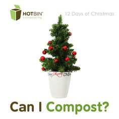 12 Days of HOTBIN Composting: Oh Christmas Tree - Day 2, composting christmas trees and decorations http://www.hotbincomposting.com/blog/oh-christmas-tree.html | #HOTBIN #recycling #compost #xmas #gardening