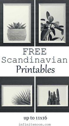 Free Scandinavian minimal plant printables wall art. Black and white modern style. 5 art prints are included for free all related to plants. These minimalist art prints go great with any modern interior decor or white and black walls. These are high-quality art prints. Various of plants are included like succulents, cactus, and much more. Click to download instantly.