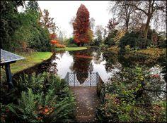Landscapes trees france ponds europe james lapett autumn (1456x1080, trees, france, ponds, europe, james, lapett, autumn)  via www.allwallpaper.in