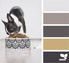 Oh so this is the Boston colour palette...funny thing my house is all ready these colours!