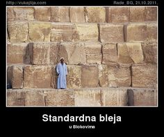 Standardna bleja