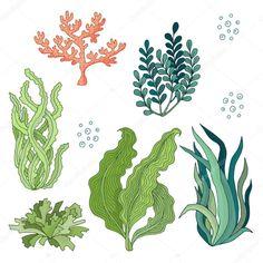 Set of watercolor seaweed - vector illustration Arte Coral, Coral Art, Underwater Plants, Underwater Painting, Pintura Coral, Coral Drawing, Coral Painting, Sea Plants, Sea Life Art
