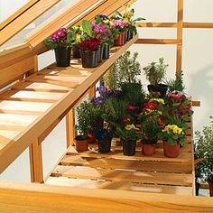 Cedar Staging and Shelving…   [L]