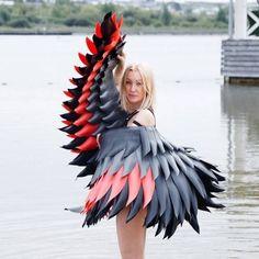 """""""Red wings, black wings"""""""