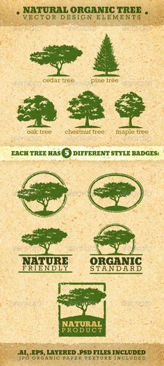 Buy Natural Organic Tree Vector Design Elements by subtropica on GraphicRiver. Natural Organic Tree Vector Design Elements are original vector badges, that were created to highlight the organ. Family Tree For Kids, Trees For Kids, Country Christmas Trees, Christmas Tree Pictures, Tree Photoshop, Cedar Trees, Tree Logos, Paper Tree, Marca Personal