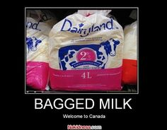 Get a Bagged Milk funny picture from Demotivational. You can get dozens of other funny pictures from Demotivational. Here are some samples of funny words: bagged, milk Canadian Things, I Am Canadian, Canadian Food, Milk In A Bag, Contests Canada, Meanwhile In Canada, Canada Eh, Canada Humor, Canada Funny