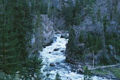 The Secrets of Yellowstone National Park, if you're going, check this out.