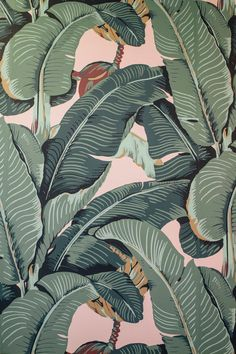 We love creating and curating modern wall art that uplifts the spaces where you live, work and play. Aesthetic Iphone Wallpaper, Aesthetic Wallpapers, Screen Wallpaper, Wallpaper Backgrounds, Tropical Wallpaper, Bohemian Wallpaper, Palm Leaf Wallpaper, Art Mur, Tropical Art