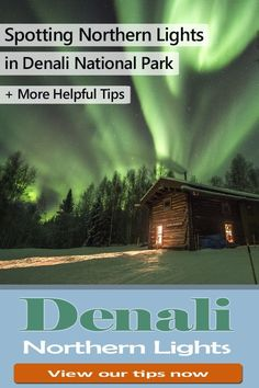 Tips for spotting the Northern Lights in Denali National Park - Alaska. + Tips for Lodging, hiking, bus tours and visiting with kids & family. Northern Lights Viewing, Northern Lights Trips, Alaska Northern Lights, Denali Alaska, Anchorage Alaska, Alaska Travel, Travel Usa, Alaska Trip, Alaska Camping