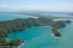 Rainforest in Punta Sal National Park on the North Coast of Honduras near Tela.