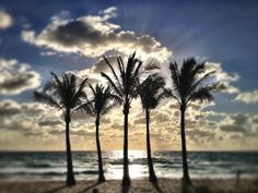 Fort Lauderdale: Beach Sunrise >> See the deals!