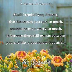 Mike Dooley, Passionate Love, Love Affair, The Secret, No Worries, Life