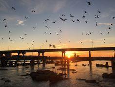 First sunrise on Potters Bridge.