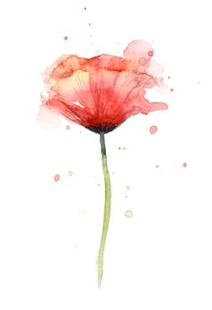 "wildsunshine: "" society6.com/product/red-poppy-watercolor–floral-illustration_print "" #watercolor_tattoo_poppy"