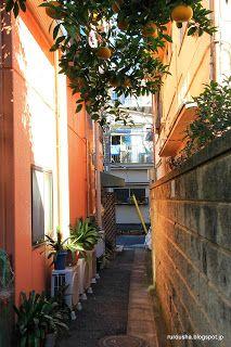 Rurousha 流浪者: Tokyo's riskiest neighbourhoods
