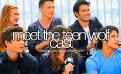Meet the Teen Wolf cast.