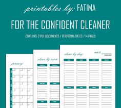 For the Confident Cleaner / By Day By Room & by PrintablesbyFatima