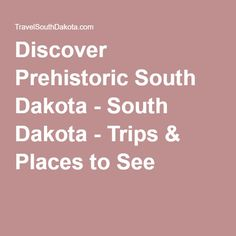 Discover Prehistoric South Dakota - South Dakota - Trips & Places to See