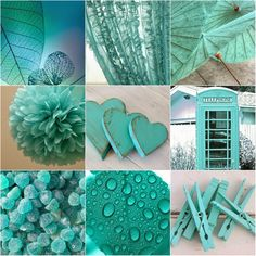 Azul Tiffany, Tiffany Blue, Shades Of Turquoise, Turquoise Color, Mood Colors, True Colors, Aqua, Color Collage, Beautiful Collage