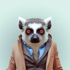 LEMUR by Yago Partal for ZOO PORTRAITS