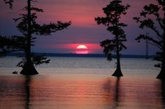 Albemarle Sound www.roanokeriverpartners.org Roanoke River, Albemarle Sound, Celestial, Sunset, Outdoor, Outdoors, Sunsets, Outdoor Games, The Great Outdoors