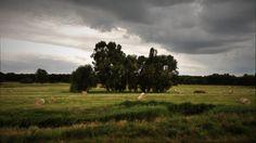 rainy landscape, Magdeburg, Germany
