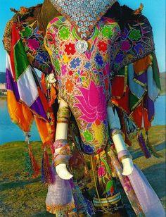 Jaipur, Rajasthan, India - the Elephant Festival. Anime Yugioh, Anime K, Anime Body, Anime Pokemon, Anime Plus, Indian Elephant, Elephant Love, Elephant India, Elephant Artwork