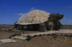 Turtle House. Best house ever.