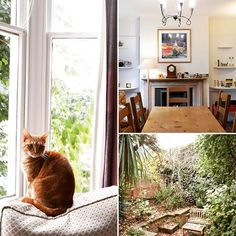 What makes a house a home? A gorgeous garden? Beautiful artwork, furniture and trinkets? Or maybe a cat? This homestay in Dalston has it all!  #homeawayfromhome #londonaccomodation #catathome #cityhomestay #whatmakesahouseahome
