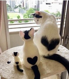 Feline Great: Classic Photos of Cats Being Cats - kittens Baby Animals Super Cute, Cute Baby Cats, Cute Little Animals, Cute Cats And Kittens, Cute Funny Animals, Kittens Cutest, Cute Dogs, Baby Kitty, Kitty Cats