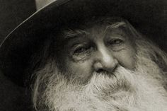 Walt Whitman ❝This is what you shall do; Love the earth and sun and the animals, despise riches, give alms to every one that asks, stand up for the stupid and crazy, devote your income and labor to others, hate tyrants,argue not concerning God, have patience and indulgence toward the people, take off your hat to nothing known or unknown or to any man or number of men, go freely with powerful uneducated persons and with the young and with the mothers of families,read these leaves in the open…