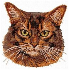 Stock of embroidery designs Abyssinian, Color Blending, Cat Breeds, Animals And Pets, Embroidery Designs, Dog Cat, Owl, Bird, Cats