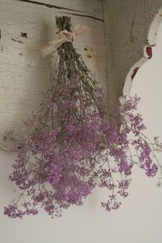 From: Ana Rosa, please visit My Flower, Flower Power, Color Lavanda, Lavender Cottage, Deco Floral, All Things Purple, Shades Of Purple, Dried Flowers, Purple Flowers