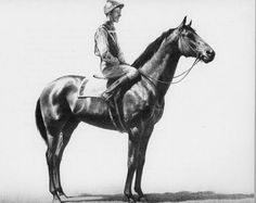 C.W. Anderson (drawing of Seabiscuit) Love this Author, if you have kids get his books they are wonderful children's stories about a boy and his horse!