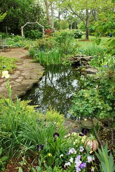 Garden pond (1) by KarlGercens.com, via Flickr
