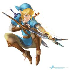 LINK! Zelda Wii U/NX by Scottaphor