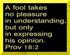 Proverbs 18:2 A fool...