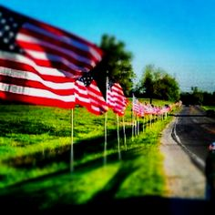 Henderson, KY. Flags for a fallen soldier. God bless the Taylor family. **David Taylor**