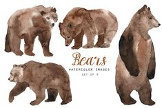 See all our of animal clipart here: Watercolor bears. -Set of 4 transparent background PNG images. Bear Watercolor, Watercolor Images, Watercolor Texture, Watercolor Animals, Watercolor Drawing, Painting & Drawing, Watercolor Ideas, Bear Illustration, Business Illustration
