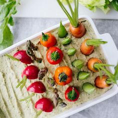 """Spring Herb Hummus Vegetable Garden 