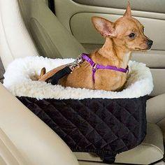 3-Wege Steckschnalle Breite 25 mm Kindersitz Hundeleine
