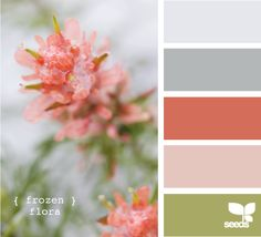 my favorite colors to work with! :D <3 [http://www.design-seeds.com/search/label/flora]