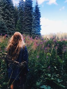 I kinda want to live in a meadow at the edge of a forest