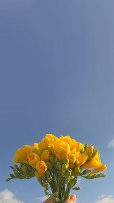 Emotion Frühling iPhone Tapete einfach: Naver Blog