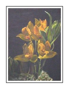 Orchids_002 Orchids, Fine Art, Painting, Paintings, Lilies, Draw, Visual Arts, Orchid, Drawings