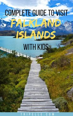 When you are planning your next family vacation, you may want to consider a destination that is a little out of the ordinary. But you need to keep an open mind and find them.  If you truly want your kids to experience a fascinating vacation with you, considering the isolated Falkland Islands might be an incredible idea that will give you brownie points with the rest of your family.